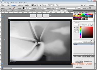 Adobe Muse Tool